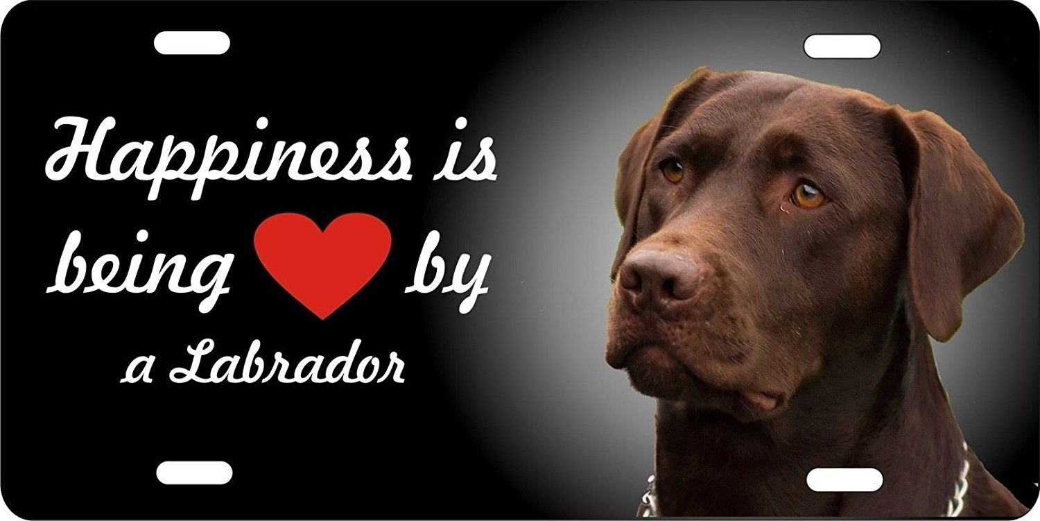 Amilly Personalized Custom Happiness is Being Loved By a Chocolate Lab Labrador License Plate 6'' x 12''metal License stainless steel License Fun License Plate Fun
