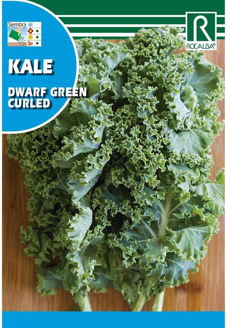 Semilla Col Kale - Rocalba: Amazon.es: Jardín