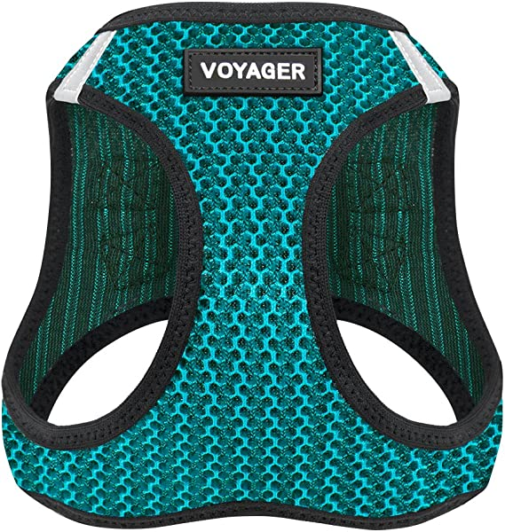 Voyager Step-in Air Harness