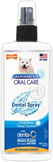 product image for Nylabone Advanced Oral Care 4 oz Dog Dental Spray, Package may vary