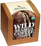 Daana Premium Organic Filter Coffee Powder, Single Origin, 250g