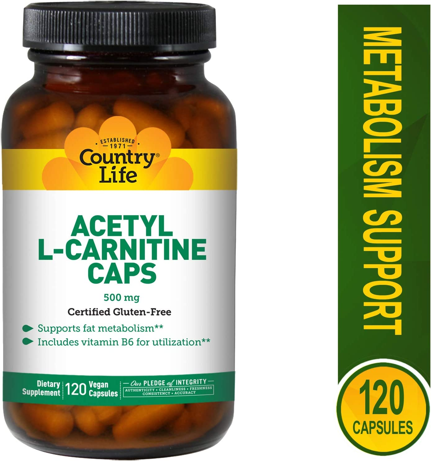 Country Life Acetyl L-Carnitine Caps – 120 Vegan Capsules – Supports Fat Metabolism – Vitamin B6 for Utilization