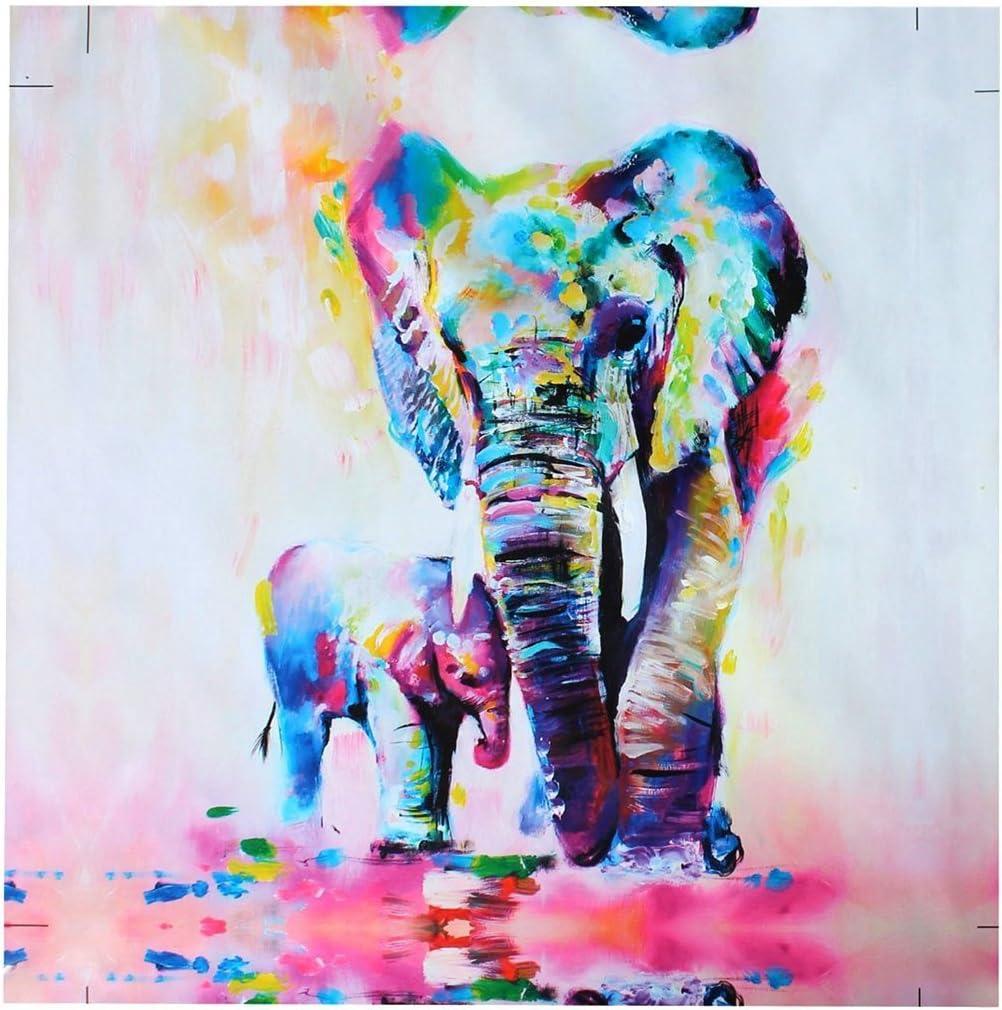 - Amazon.com: Heyuni. 40X40cm Colorful Elephant Oil Painting Print
