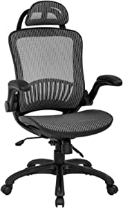 Office Chair Ergonomic Desk Chair Mesh Computer Chair with Lumbar Support Headrest Flip UP Arms Rolling Swivel Adjustable Task Chair for Adults(Grey)