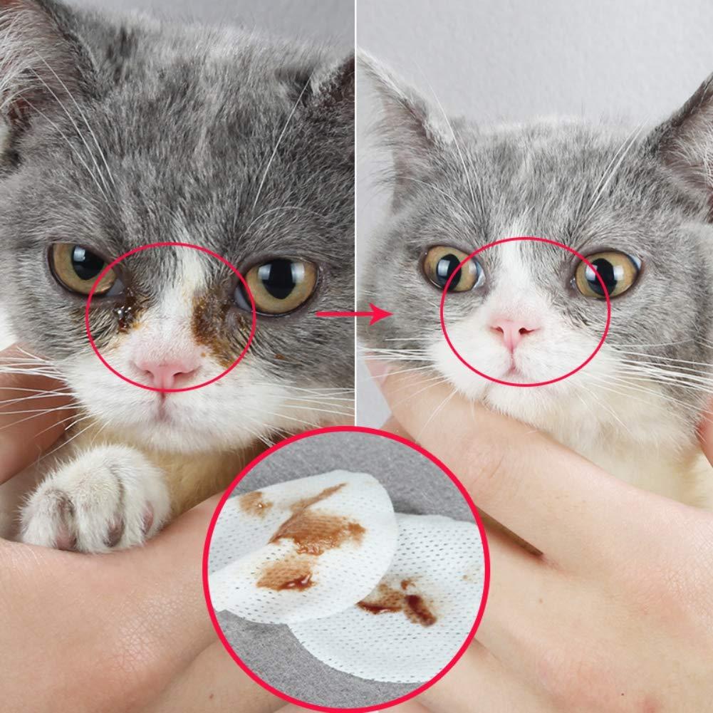 PowerBH - Toalla de Limpieza para Perros y Gatos, para Mascotas, toallitas limpias y húmedas: Amazon.es: Productos para mascotas