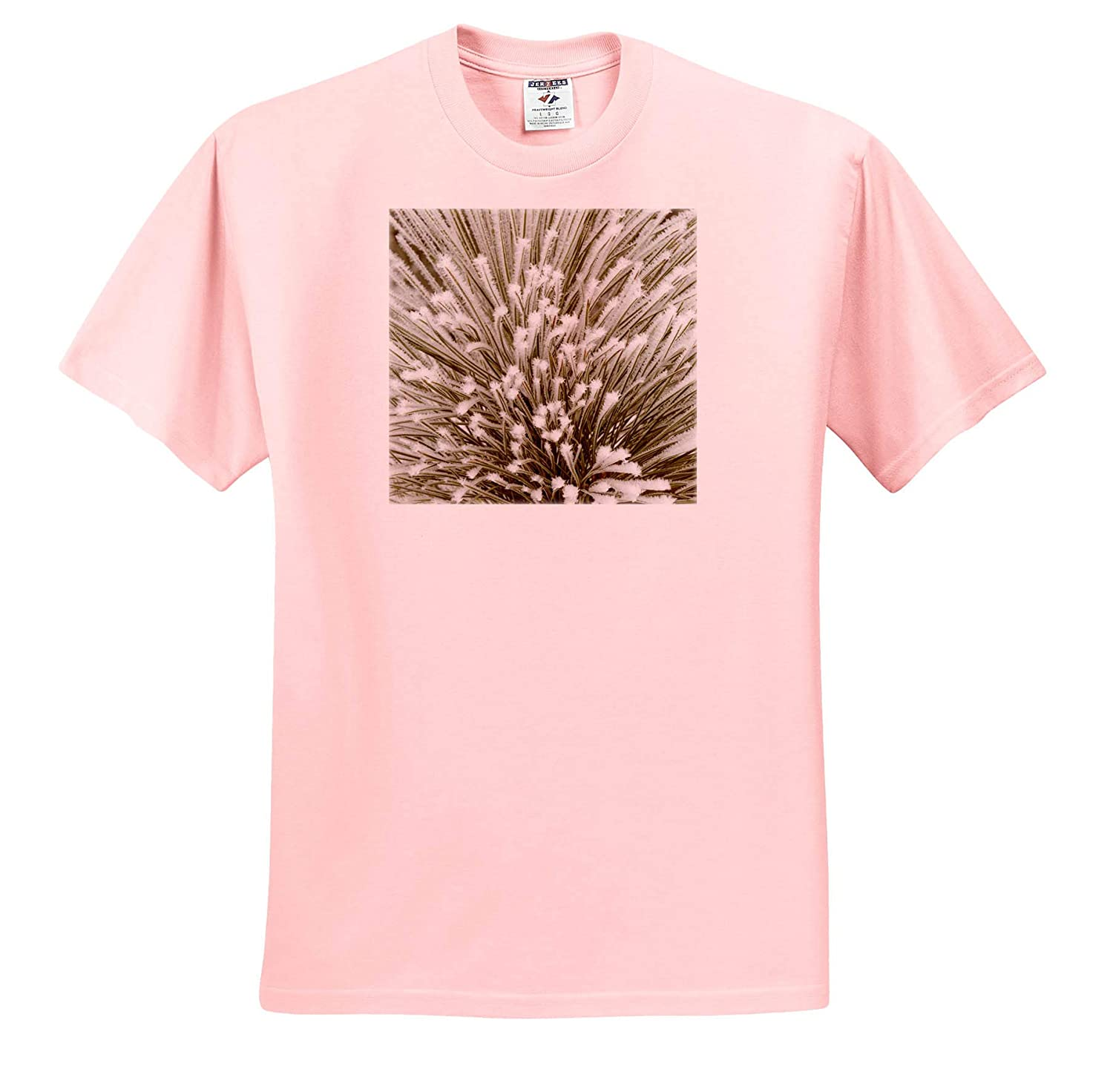 Pine Bough with Heavy Frost Crystals Winter Adult T-Shirt XL ts/_314907 3dRose Danita Delimont Montana Kalispell