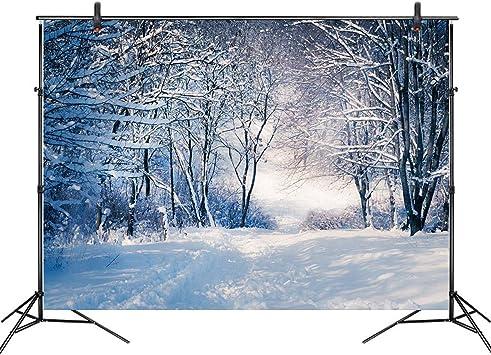 LB 210x150cm Vinilo Invierno Fondo Bosque de Nieve,árboles Fondo de Fotografia para Estudio Fotográfico, Vacaciones Partido Decoración,Personalizado: Amazon.es: Hogar