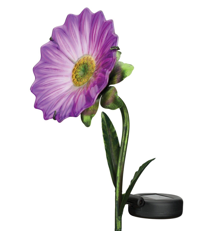 Regal Art & Gift 11636 Mini Daisy Stake Solar Light Garden Decor, Purple