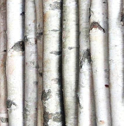 amazon com decorative birch poles 8 feet long 2 poles 3 4