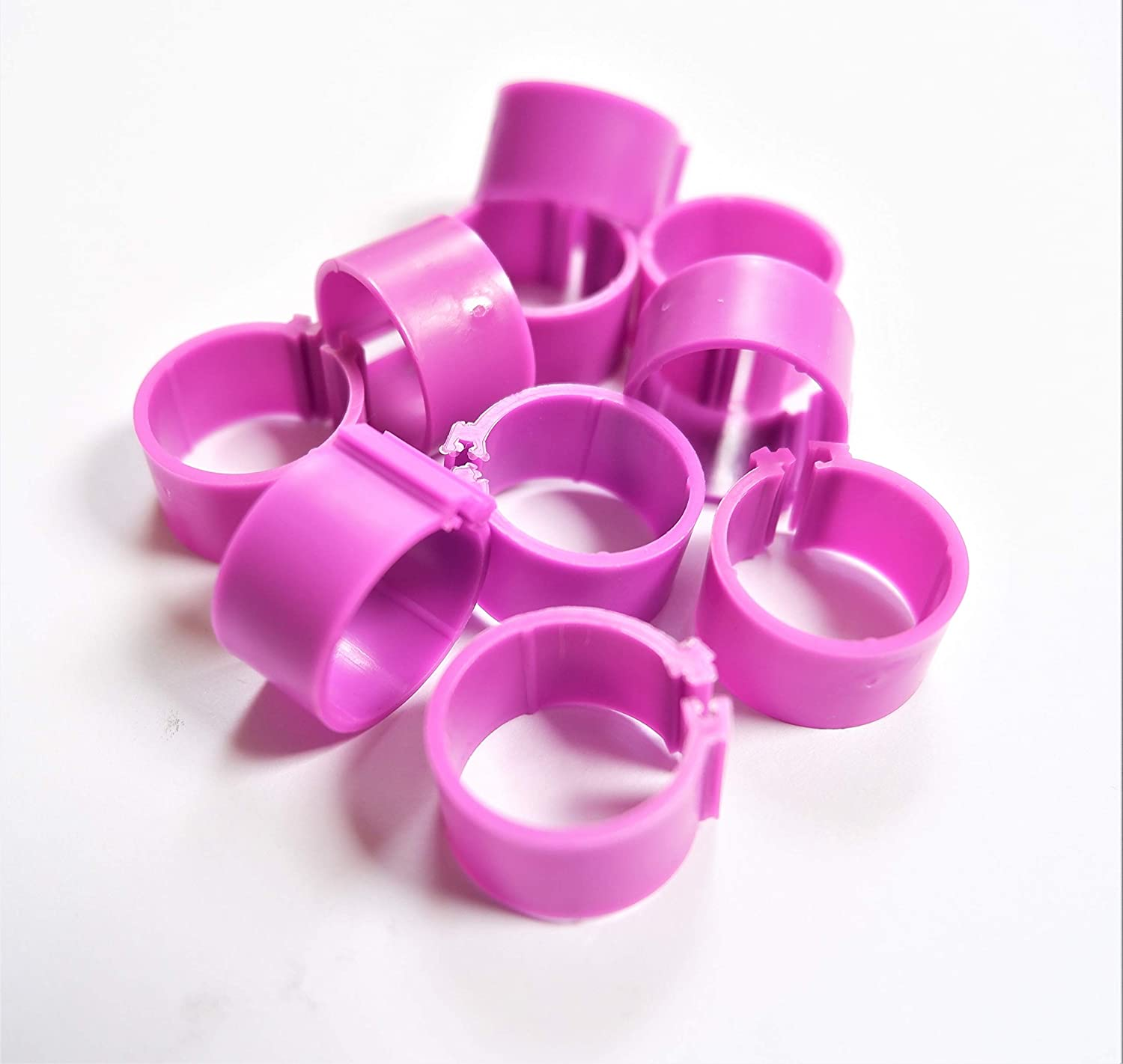 Pack of 10 x 16mm Chicken Poultry Flat Leg Rings in PURPLE Free Postage