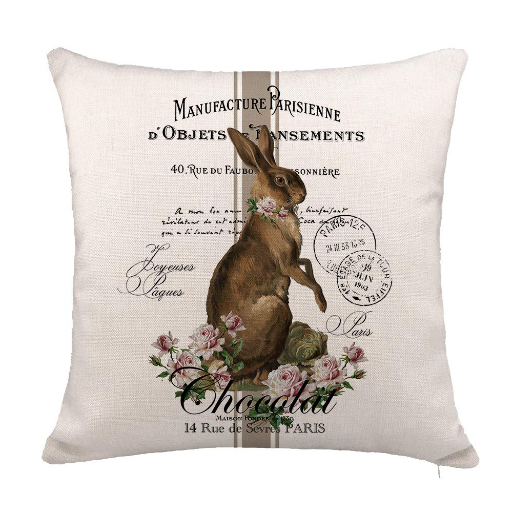 YOENYY Rabbit Easter Throw Pillow Cover Cushion Case for Sofa Couch Vintage French Shabby Chic Bunny Home Decor Cotton Linen 18 x 18