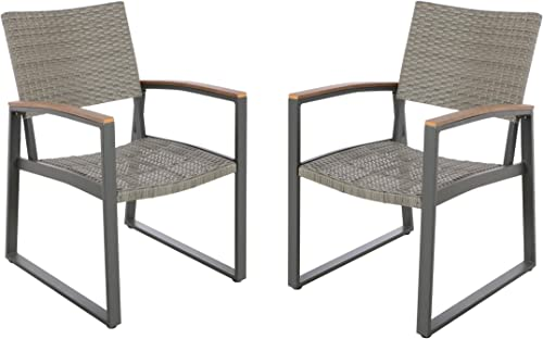 Christopher Knight Home 305236 Aubrey Outdoor Dining Chairs Set of 2 , Gray