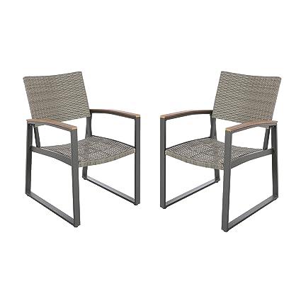 Fine Aubrey Outdoor Wicker Dining Chairs With Aluminum Frame Set Of 2 Gray Creativecarmelina Interior Chair Design Creativecarmelinacom