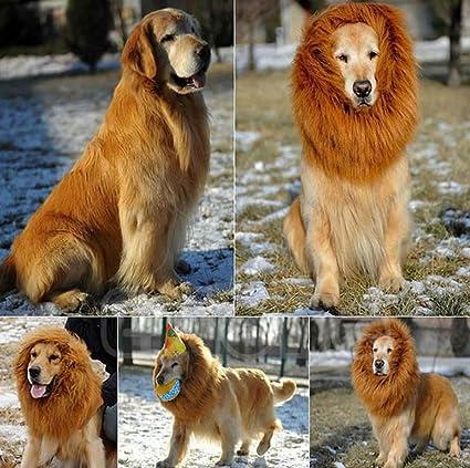 Peluca Disfraz de León, Sombrero Pelo Diverdido Cosplay Traje para Perro Gato Cachorro Mascotas,