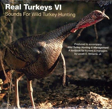 Lovett E Williams Real Turkeys II Fall Calls of The Wild Turkey