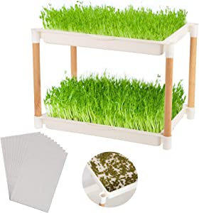 Double Layers Seed Sprout Trays with Wood Frame- Food Grade Plastic Seed Sprouter with 10pcs Germination Paper Wheatgrass Seeds Growing Storage Trays Sprouting Kits for Garden Home Seedling Planting