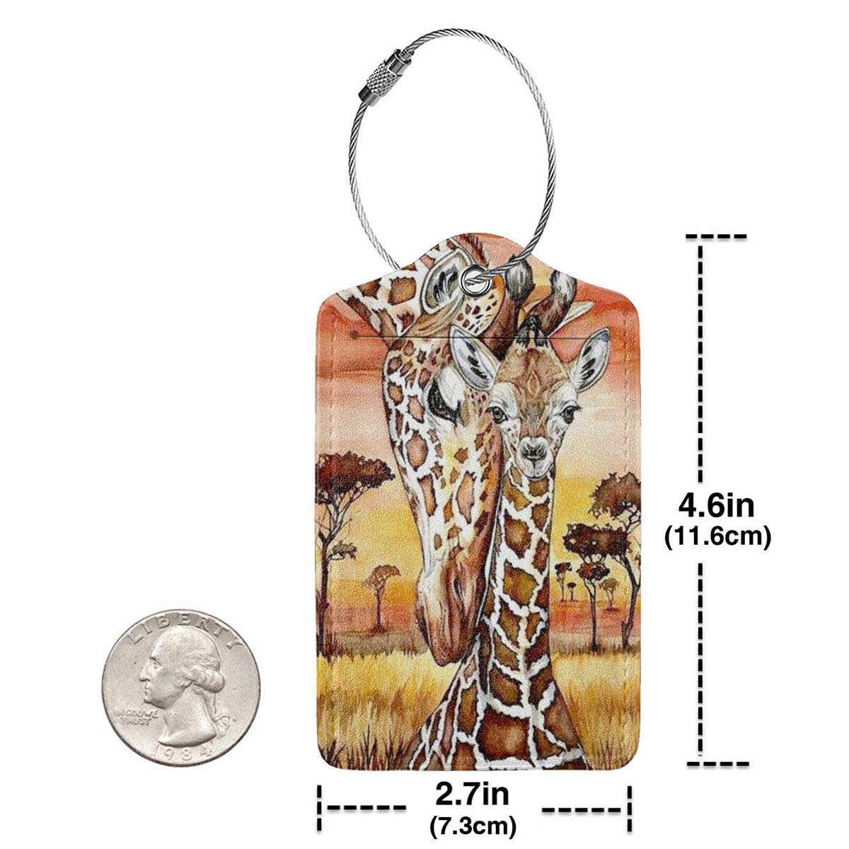 Colourful Giraffe Luggage Tags With Full Back Privacy Cover W//Steel Loops