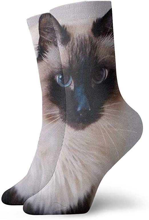 Pet Animal Designs Balinese Cat Print Running Shoes for Men-Casual Sneaker
