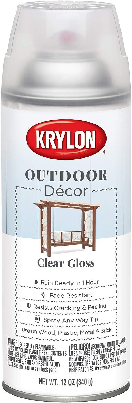 Krylon K09323000 Outdoor Décor Spray Paint, Clear
