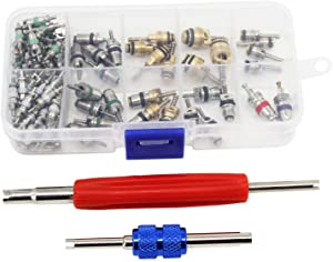 OCR Air Conditioning A/C Valve Core R12 R134a Automotive Air Conditioning Refrigeration Tire Valve Stem Cores Remover tool Assortment Kit (102PCS)