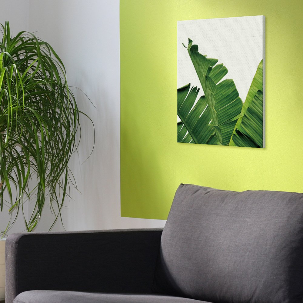 Amazon.com: Canvas Wall Art Decor Framed Banana Leaves 9.8\