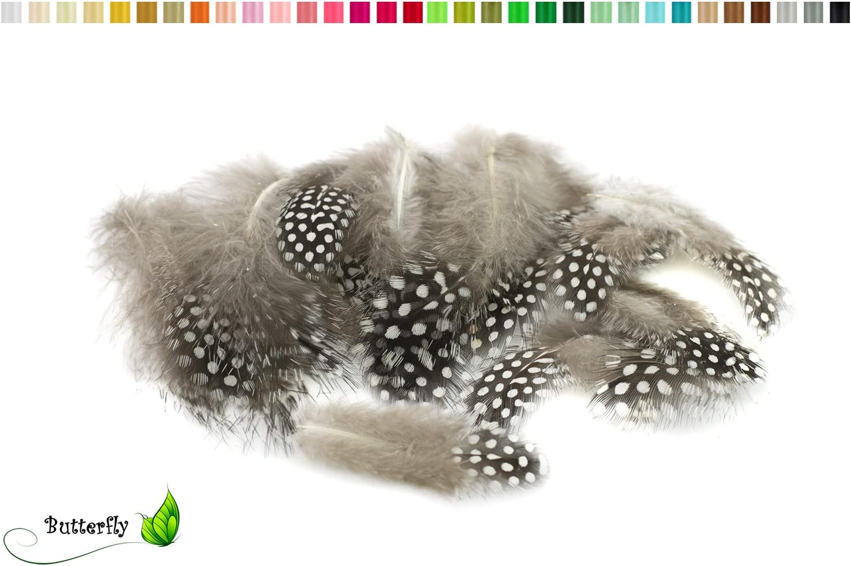 Perlhuhnfedern natur im Beutel mit 5gPerlhuhn FederDekofedernPerlhuhnfe