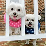 """Puppy Bumper - Keep Your Dog on the Safe Side of the Fence - Pink Dot - 10-13"""""""