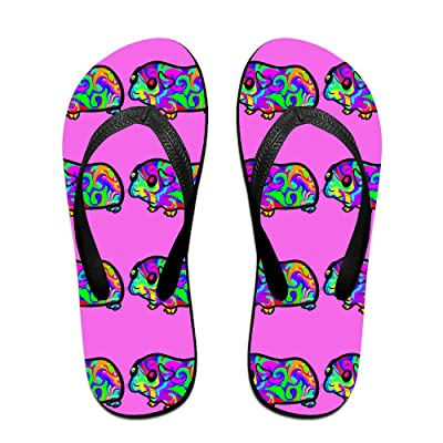 Colorful Guinea Pig Unisex Fashion Beach Slipper Indoor And Outdoor Classical Flip Flop Thong Sandals