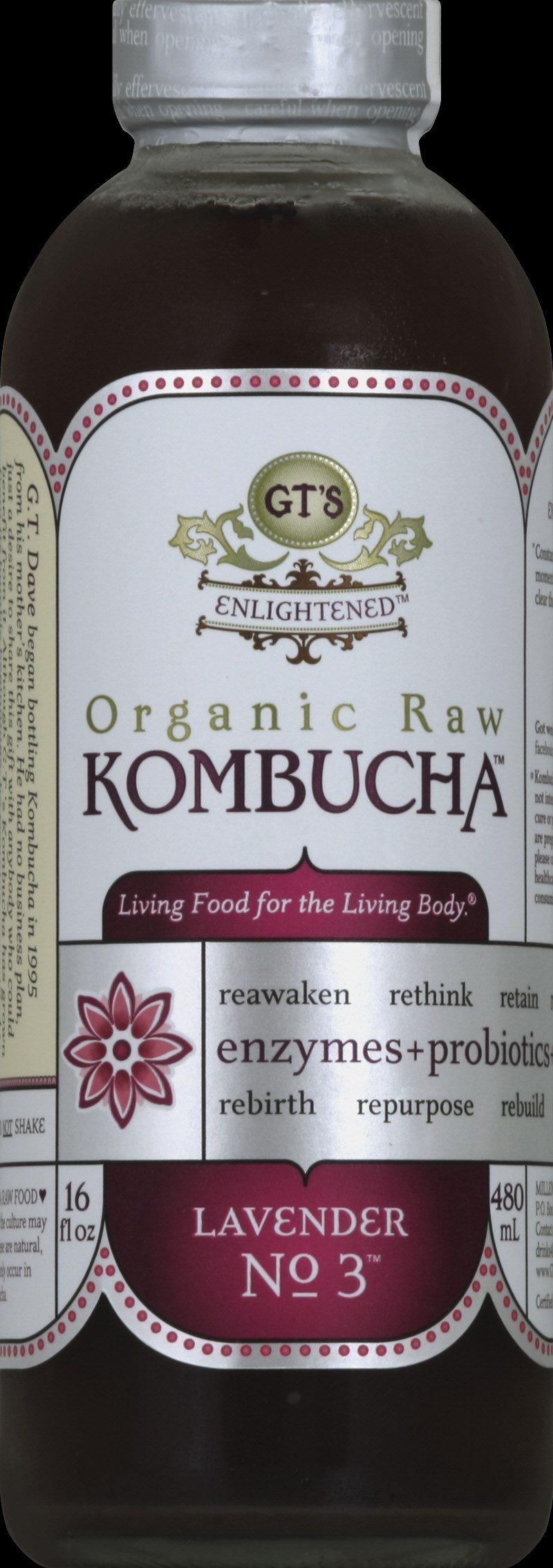 Amazon.com : GT'S ENLIGHTENED KOMBUCHA, Hibiscus, 16 Ounce