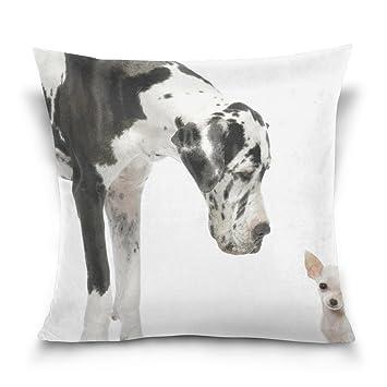 Amazon.com: leisisi gran danés negro blanco perros, para el ...