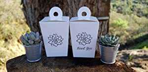 Succulent Favor Guest Take Home Box - to Go Box - Travel Box (50 (Succulent + Thank You))