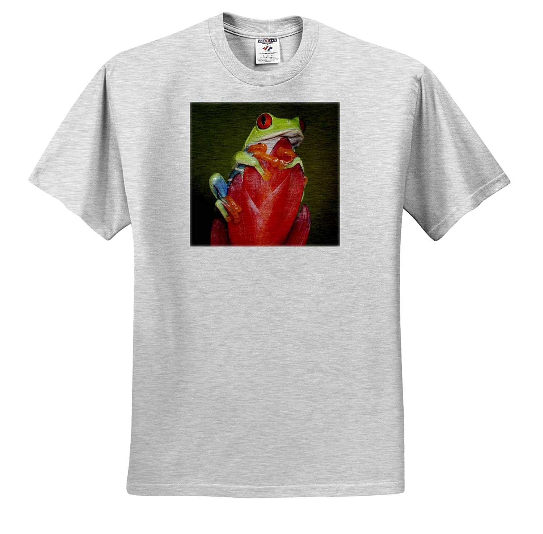 Frogs ts/_314407 Agalychnis callidryas Red-Eyed Tree Frog - Adult T-Shirt XL 3dRose Danita Delimont