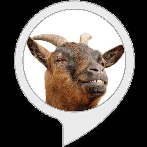 Il critico Vittorio: Capra, capra, capra!