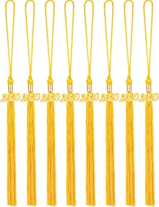 8 Pieces Graduation Tassel Graduation Cap Tassel with 2019/2020 Year Charm for Graduation Parties, 9.4 Inches (Gold, 2020)
