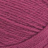 Lion Brand Yarn 201-142 Basic Stitch Premium