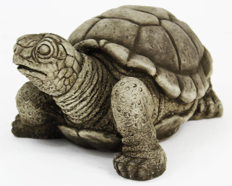 Amazon.com : Turtle Concrete Statue : Garden & Outdoor