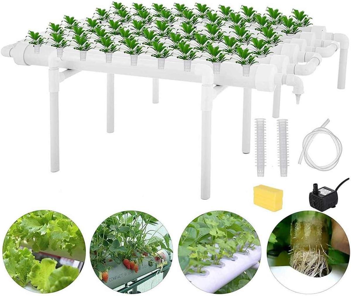 KQYAN 54 Hoyos hidropónico tuberías del Sitio Kit de Cultivo Profundo Cultura del Agua de plantación Caja de jardinería Sistema vivero hidropónico Pot Estante de 220V: Amazon.es: Jardín