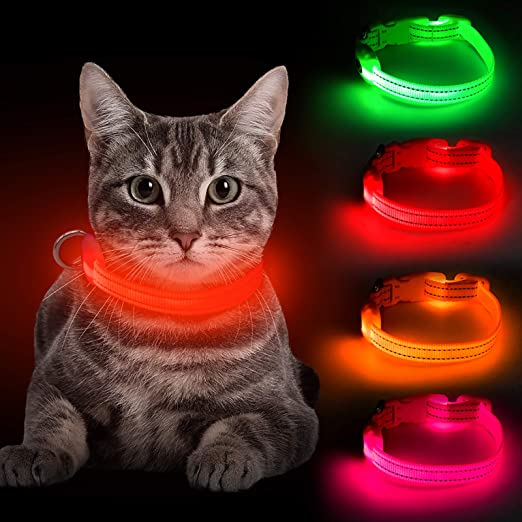 BSEEN LED Dog Collar, USB Rechargeable Light Up Pet Collar for Small Dog, Glowing Safety Cat Collar with Adjustable Nylon Webbing High Visibility for Dogs & Cats (Red)