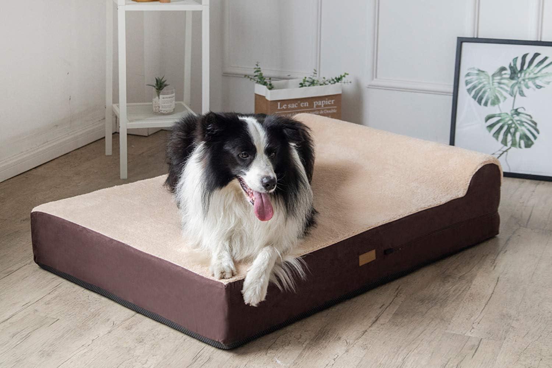 Cama ortopedica para perros