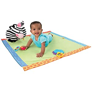 Fisher-Price Discover 'n Grow Take-Along Play Blanket (Discontinued by Manufacturer)