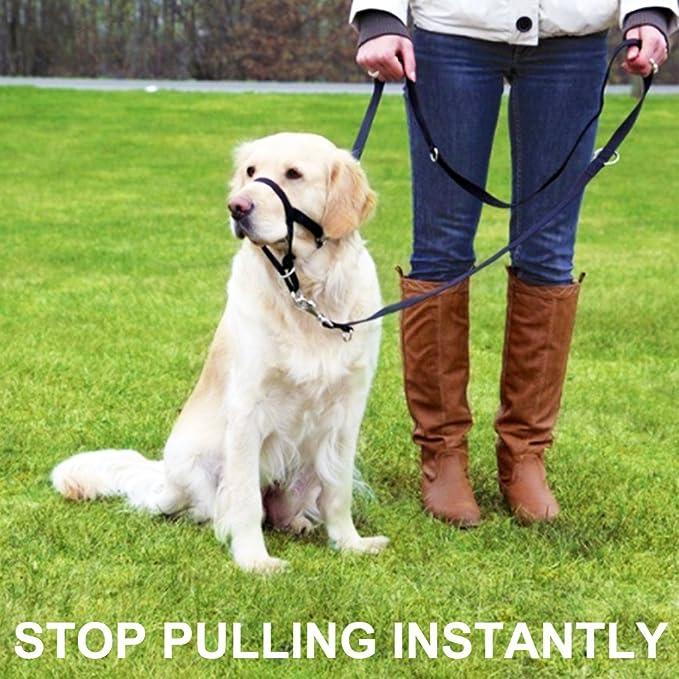 Barkless Hunde Halfter No Pull Training Tool f/ür Hunde auf Spazierg/ängen inkl gratis Trainingsanleitung 5