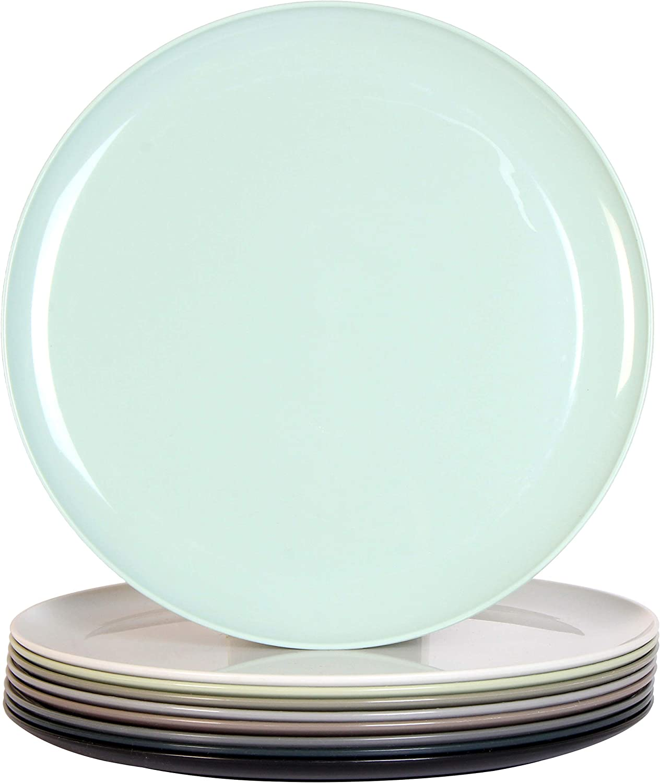 Youngever 10 Inch Plastic Plates, Large Plates, Dinner Plates, Microwave Safe, Dishwasher Safe, Set of 9 (9 Urban Colors)