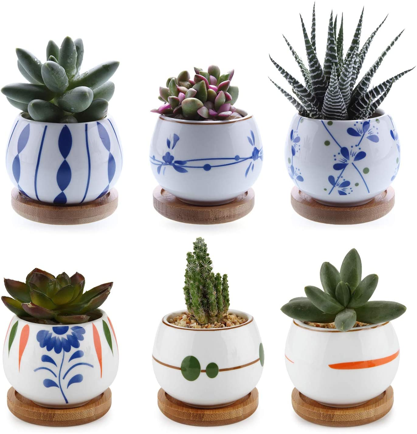 T4u 7cm Mini Succulent Pot With Bamboo Tray Set Of 6 Small Cactus Planter Plant Pot Window Box For Home Office Table Desktop Decoration For Family Birthday Wedding Christmas Amazon Co Uk Kitchen