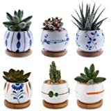 T4U Succulent Planters with Bamboo Tray 2.75 Inch - Set of 6, Small Cute Ceramic Cactus Pots with Drainage Hole for Home…