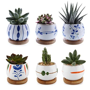 T4U Succulent Planters with Tray 2.75'' - Set of 6, Small Cute Ceramic Cactus Pots with Bamboo Tray Decor