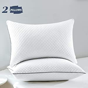 GOHOME Bed Pillows for Sleeping 2 Pack, Soft Standard Pillows with Luxury Velvet Fabric, Full Size Pillows with Down Alternative Fiber Fill for Side and Back Sleepers, 20