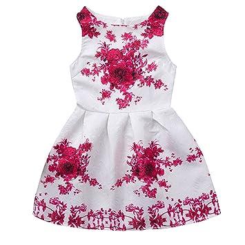 26079b8c4 feiXIANG Ropa de niña Vestido Estampado de Flores Vestido de ...