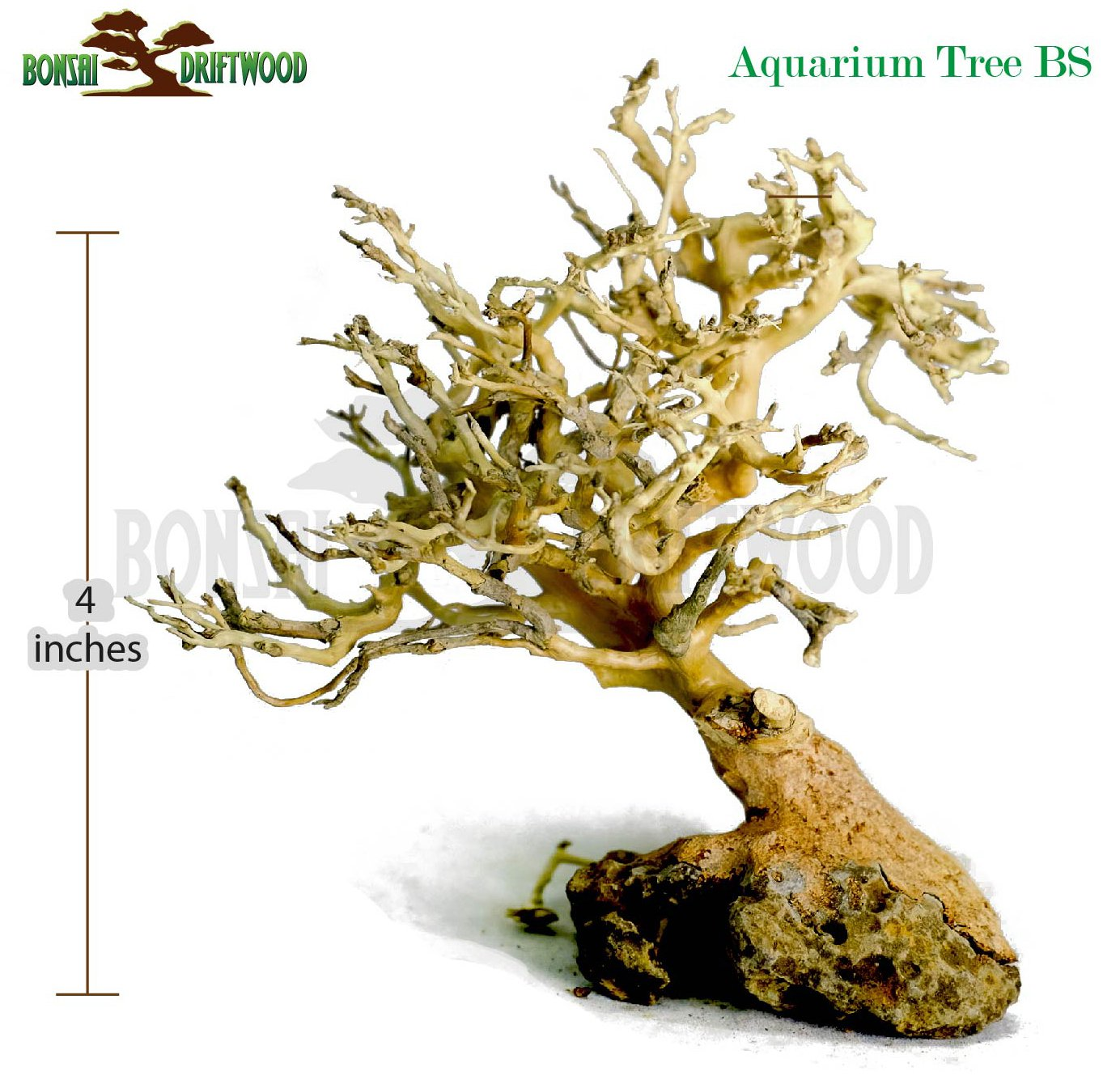 Bonsai Driftwood Aquarium Tree (5 Inch Height) Natural, Handcrafted Fish Tank Decoration | Helps Balance Water pH Levels, Stabilizes Environments | Easy to Install by Bonsai Driftwood (Image #3)