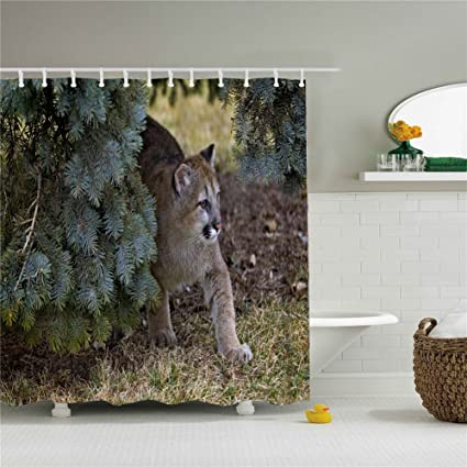 3d Animal Lion Shower Curtain Size 69x84 Inch