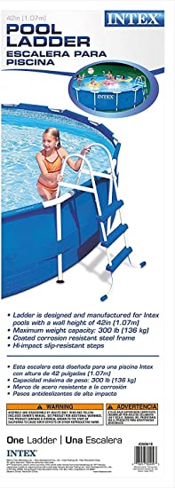 Escalera para piscina 1,07 m Intex: Amazon.es: Jardín